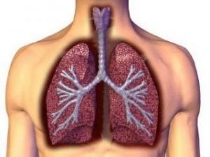 Akciğer Kanseri ve Erken Tanı
