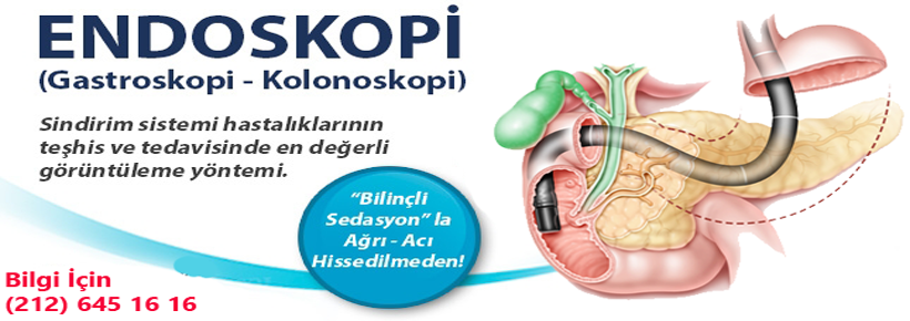 Endoskopi Resim